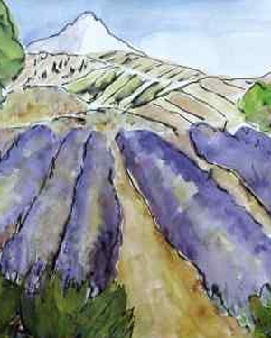 Lavender Mountain View II
